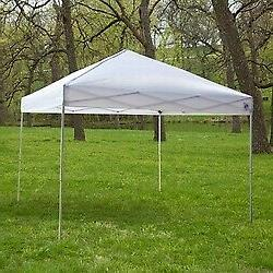 White 10-Ft x 10-Ft Outdoor Canopy Tent Gazebo with Steel Fr